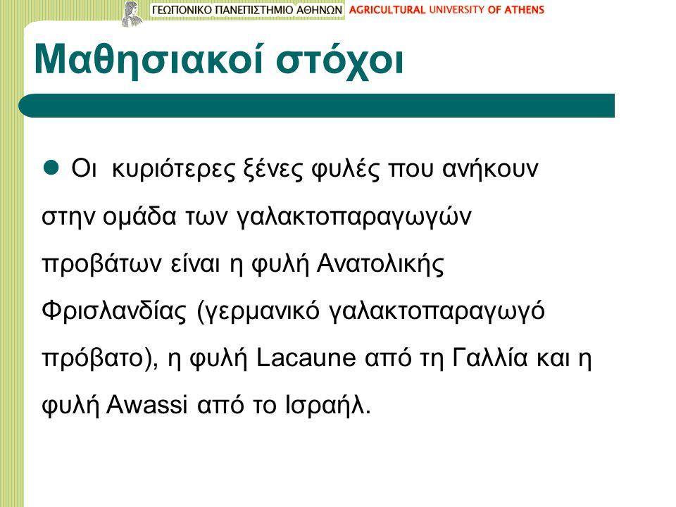 ΠΡΟΒΑΤΟ ΑWASSI 6/7 Αποδόσεις του βελτιωμένου Awassi στο Ισραήλ (από E.