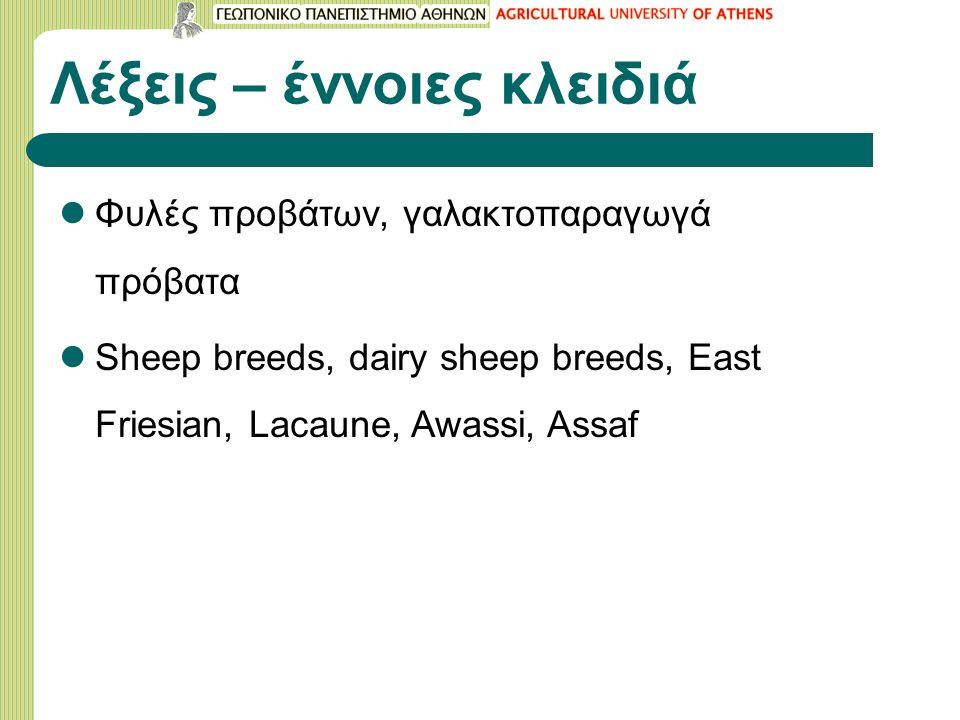 Λέξεις – έννοιες κλειδιά Φυλές προβάτων, γαλακτοπαραγωγά πρόβατα Sheep breeds, dairy sheep breeds, East Friesian, Lacaune, Awassi, Assaf