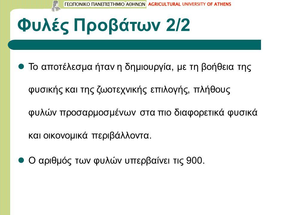 Φυλή LACAUNE Γαλλίας 8/9 Οι συγκρίσεις με άλλες φυλές είναι σχετικά λίγες (Manchega, Friesian) FriesianLacaune Γαλακτοπαραγωγή 1 η ΓΠ / ημέρες (χωρίς Θηλασμό) 333 kg/221 (21)330 kg/220 (17) Γαλακτοπαραγωγή ≥2 η ΓΠ / ημέρες (χωρίς Θηλασμό) 385 kg/243 (32)392 kg/241 (25) Πολυδυμία 2,22,0 Ημερήσια Αύξηση Βάρους στα Αρνιά 0,350 kg0,410 kg Αποτελέσματα σε ιδιωτική εκτροφή του Οντάριο (Καναδάς) με μετρήσεις του παραγωγού (Regli, 1999) Η διάδοση του προβάτου Lacaune σε άλλες χώρες