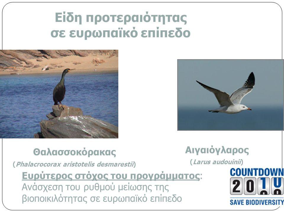 Είδη προτεραιότητας σε ευρωπαϊκό επίπεδο Θαλασσοκόρακας (Phalacrocorax aristotelis desmarestii) Αιγαιόγλαρος (Larus audouinii) Ευρύτερος στόχος του προγράμματος: Ανάσχεση του ρυθμού μείωσης της βιοποικιλότητας σε ευρωπαϊκό επίπεδο
