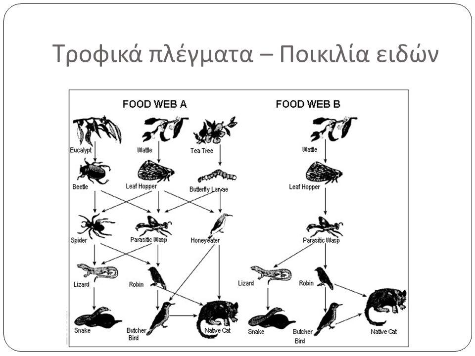 T ροφικά πλέγματα – Ποικιλία ειδών