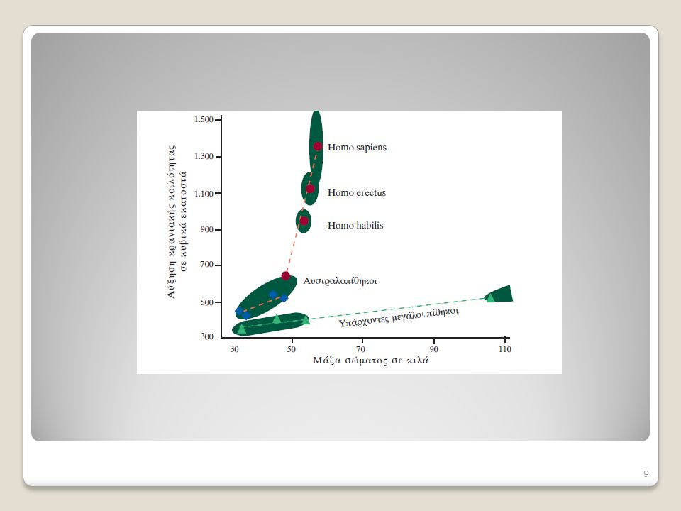 Η αύξηση του μεγέθους του εγκεφάλου κατά την Η αύξηση του μεγέθους του εγκεφάλου κατά την εξέλιξη του H.