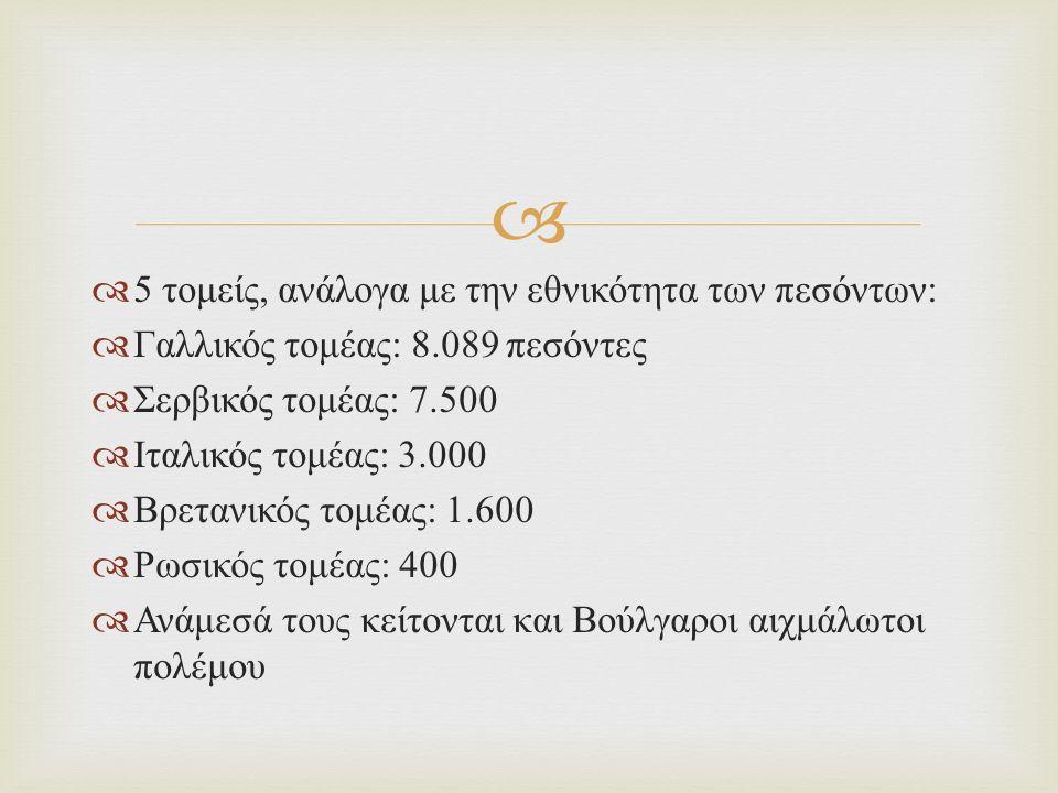   5 τομείς, ανάλογα με την εθνικότητα των πεσόντων :  Γαλλικός τομέας : 8.089 πεσόντες  Σερβικός τομέας : 7.500  Ιταλικός τομέας : 3.000  Βρετανικός τομέας : 1.600  Ρωσικός τομέας : 400  Ανάμεσά τους κείτονται και Βούλγαροι αιχμάλωτοι πολέμου