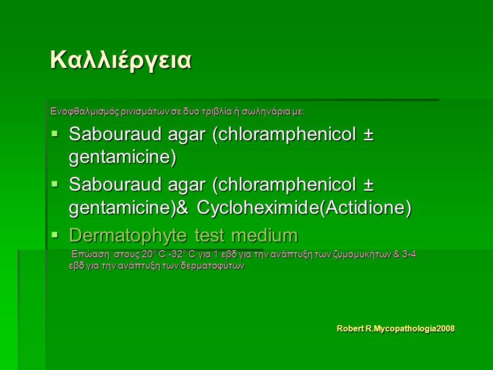 Καλλιέργεια Ενοφθαλμισμός ρινισμάτων σε δυο τριβλία ή σωληνάρια με:  Sabouraud agar (chloramphenicol ± gentamicine)  Sabouraud agar (chloramphenicol ± gentamicine)& Cycloheximide(Actidione)  Dermatophyte test medium Επώαση στους 20° C -32° C για 1 εβδ για την ανάπτυξη των ζυμομυκήτων & 3-4 εβδ για την ανάπτυξη των δερματοφύτων Επώαση στους 20° C -32° C για 1 εβδ για την ανάπτυξη των ζυμομυκήτων & 3-4 εβδ για την ανάπτυξη των δερματοφύτων Robert R.Mycopathologia2008