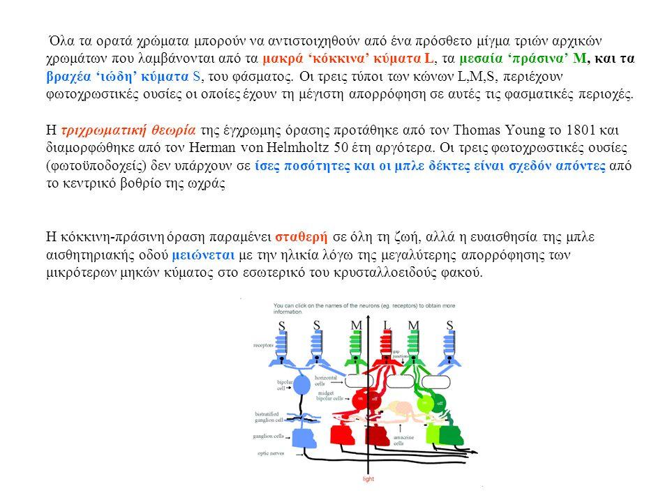 Όλα τα ορατά χρώματα μπορούν να αντιστοιχηθούν από ένα πρόσθετο μίγμα τριών αρχικών χρωμάτων που λαμβάνονται από τα μακρά 'κόκκινα' κύματα L, τα μεσαία 'πράσινα' M, και τα βραχέα 'ιώδη' κύματα S, του φάσματος.