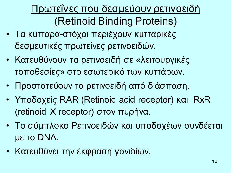 15 Retinol binding protein (RBP), transthyretin (TTR), cellular retinol biding protein (CRBP), alcohol dehydrogenase (ROLDH), lecitin retinol acetyltransferase (LRAT), retinal dehydrogenase (RALDH), retinoic acid (RA), retinoic acid receptors (RAR), retinoid X receptors (RXR).