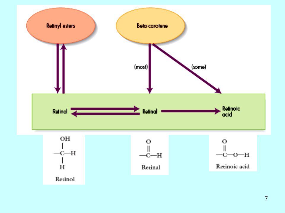 17 Λειτουργίες της βιταμίνης Α: Όραση Η ρετινάλη μετατρέπει το ορατό φώς σε νευρικό σήμα στον αμφιβληστροειδή του ματιού.