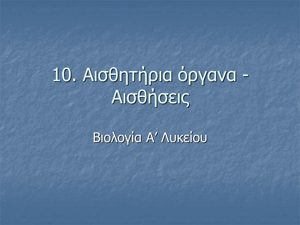 10. Αισθητήρια όργανα - Αισθήσεις Βιολογία Α' Λυκείου
