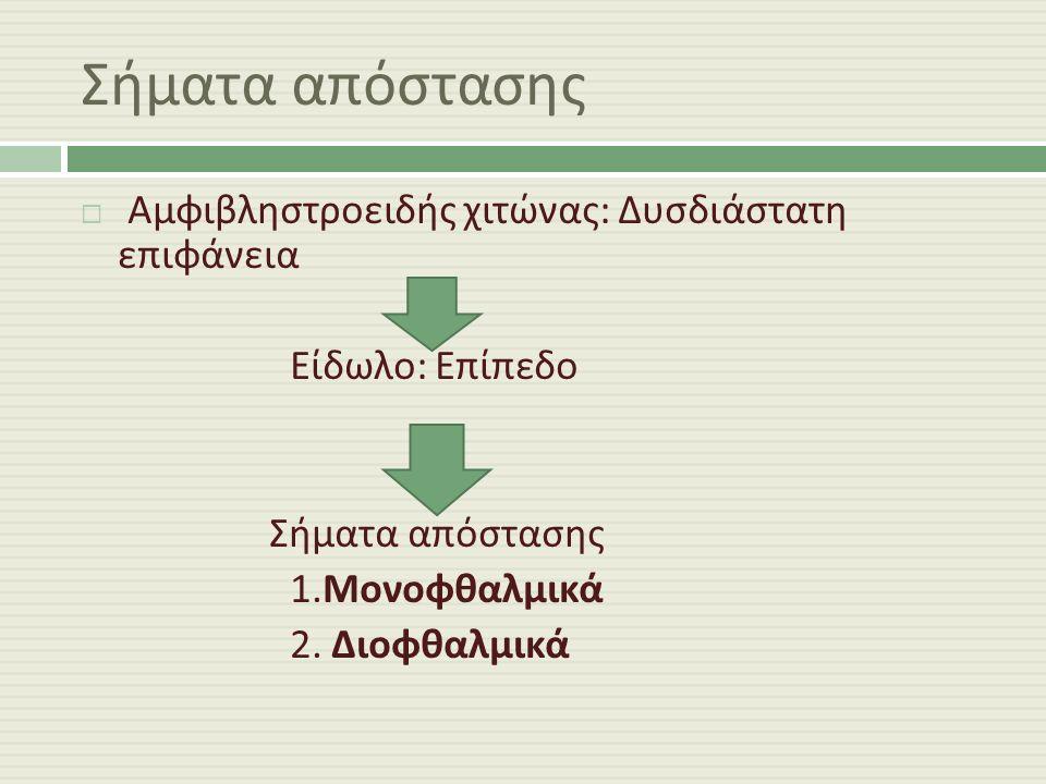 Σήματα απόστασης  Αμφιβληστροειδής χιτώνας : Δυσδιάστατη επιφάνεια Είδωλο : Επίπεδο Σήματα απόστασης 1.