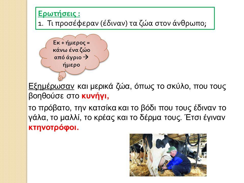 Ερωτήσεις : 1.Τι προσέφεραν ( έδιναν ) τα ζώα στον άνθρωπο ; Εξημέρωσαν και μερικά ζώα, όπως το σκύλο, που τους βοηθούσε στο κυνήγι, το πρόβατο, την κ