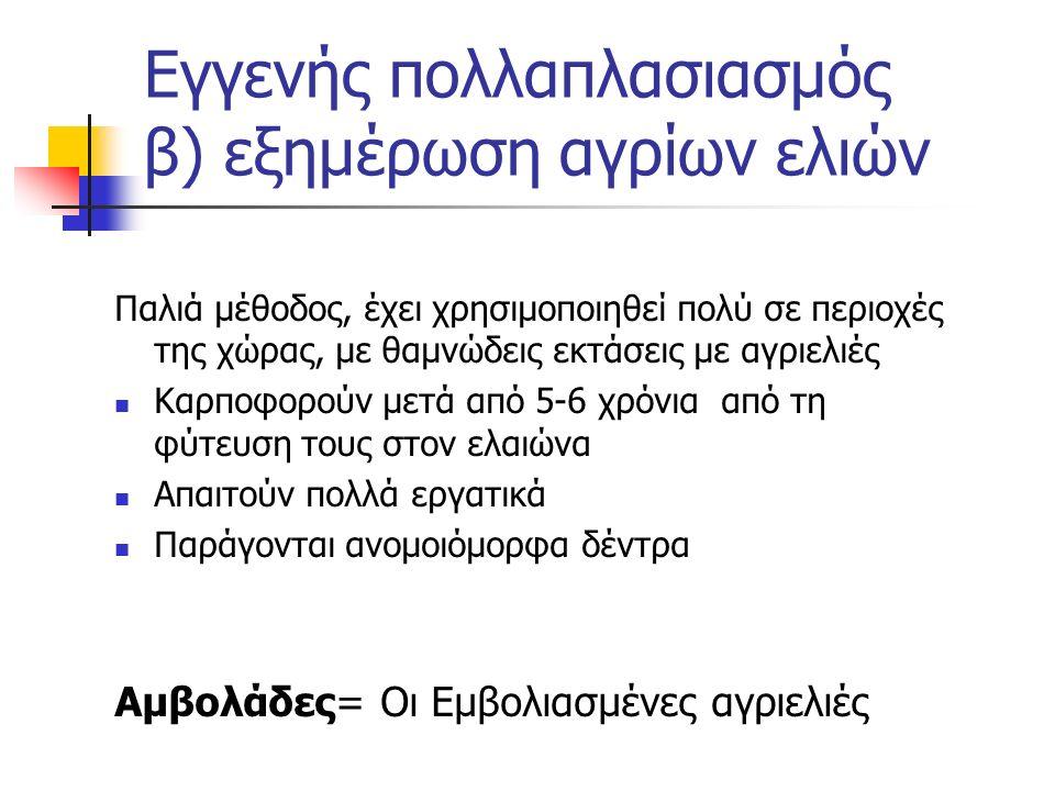 Εγγενής πολλαπλασιασμός β) εξημέρωση αγρίων ελιών Παλιά μέθοδος, έχει χρησιμοποιηθεί πολύ σε περιοχές της χώρας, με θαμνώδεις εκτάσεις με αγριελιές Κα