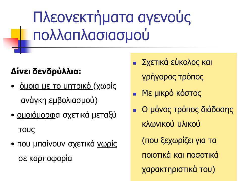 Εγγενής πολλαπλασιασμός α) σπορόφυτα (υποκείμενα) Α) με σπόρο (υποκείμενα + μετά εμβολιασμός πάντα) Μειονεκτήματα: Βραδύς (τα δενδρύλια μένουν πολύ στα φυτώρια) Ανομοιόμορφα δενδρύλια Μεγάλο κόστος Σε δύο στάδια: δημιουργία σποροφύτων - υποκειμένων, από επιλεγμένους πυρήνες (σπόρους) εμβολιασμός των υποκειμένων με τις επιλεγμένες ποικιλίες