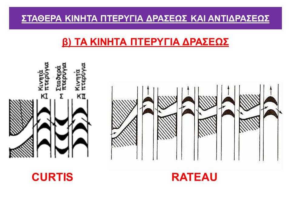 β) ΤΑ ΚΙΝΗΤΑ ΠΤΕΡΥΓΙΑ ΔΡΑΣΕΩΣ ΣΤΑΘΕΡΑ ΚΙΝΗΤΑ ΠΤΕΡΥΓΙΑ ΔΡΑΣΕΩΣ ΚΑΙ ΑΝΤΙΔΡΑΣΕΩΣ RATEAUCURTIS