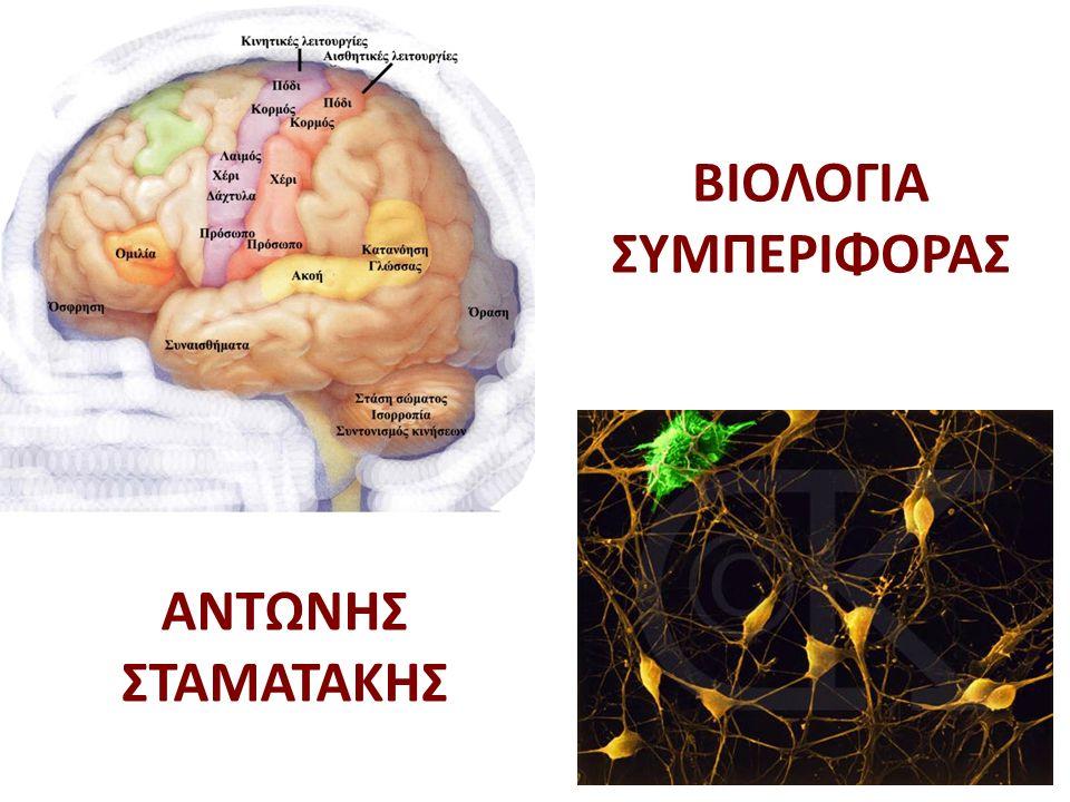 1.Εισαγωγή - Αδρή Ανατομία Εγκεφάλου 2.Νευρικά κύτταρα 3.Συνάψεις & Νευροδιαβιβαστές 4.Φυλετικός διμορφισμός εγκεφάλου και συμπεριφοράς 5.Στρες και Συναίσθημα 6.Μάθηση & Μνήμη 7.Ανταμοιβή & Εθισμός 8.Γλώσσα 9.Προσοχή-Εγρήγορση - Σύνδρομο Ελλειμματικής Προσοχής 10.Σχεδιασμός, λήψη αποφάσεων & μνήμη εργασίας 11.Πρόσληψη Τροφής 12.Ανάπτυξη Δεσμού (Pair-bonding) 13.