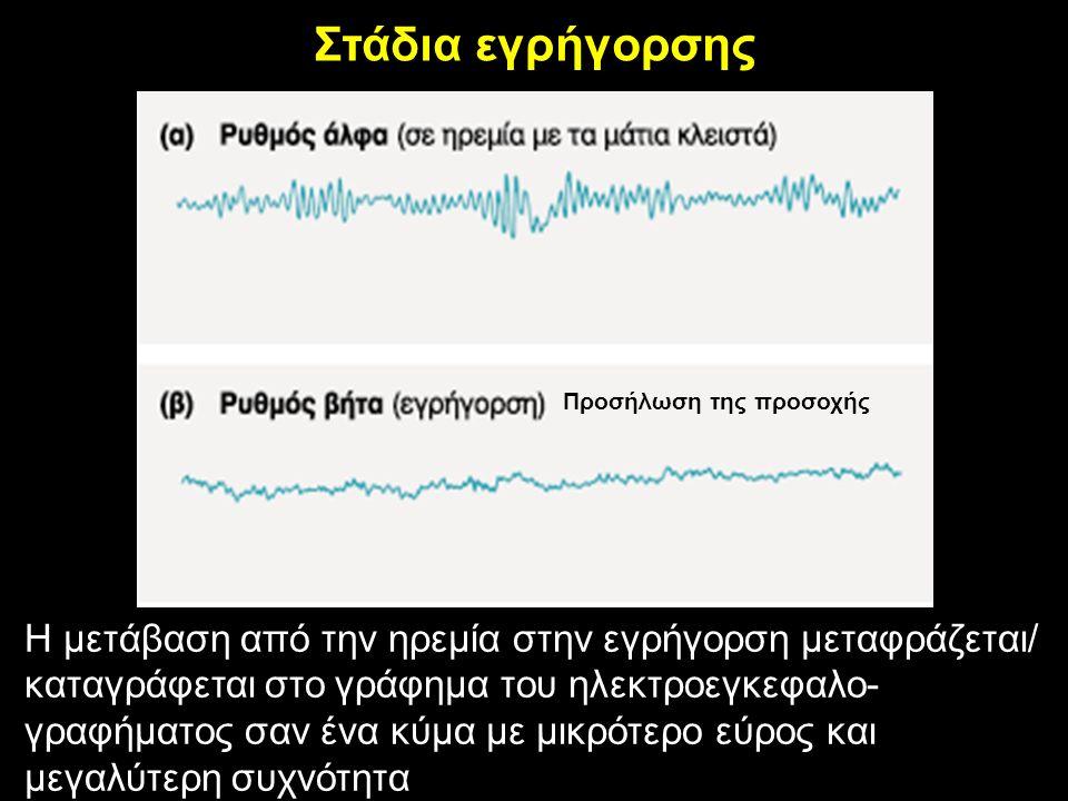 Στάδια εγρήγορσης Προσήλωση της προσοχής Η μετάβαση από την ηρεμία στην εγρήγορση μεταφράζεται/ καταγράφεται στο γράφημα του ηλεκτροεγκεφαλο- γραφήματος σαν ένα κύμα με μικρότερο εύρος και μεγαλύτερη συχνότητα