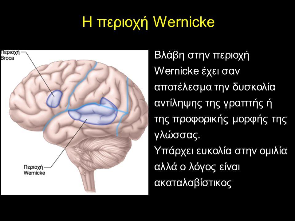Η περιοχή Wernicke Βλάβη στην περιοχή Wernicke έχει σαν αποτέλεσμα την δυσκολία αντίληψης της γραπτής ή της προφορικής μορφής της γλώσσας.