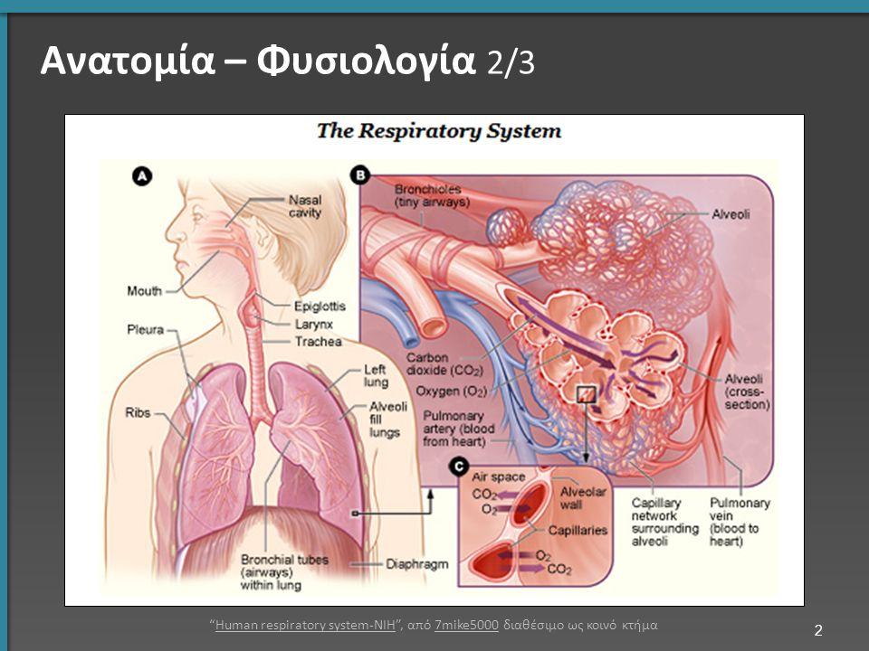 """Ανατομία – Φυσιολογία 2/3 2 """"Human respiratory system-NIH"""", από 7mike5000 διαθέσιμο ως κοινό κτήμαHuman respiratory system-NIH7mike5000"""