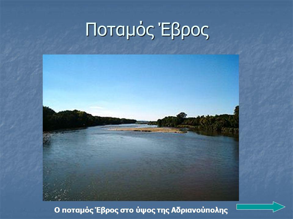 Ο ποταμός Έβρος στο ύψος της Αδριανούπολης Ποταμός Έβρος