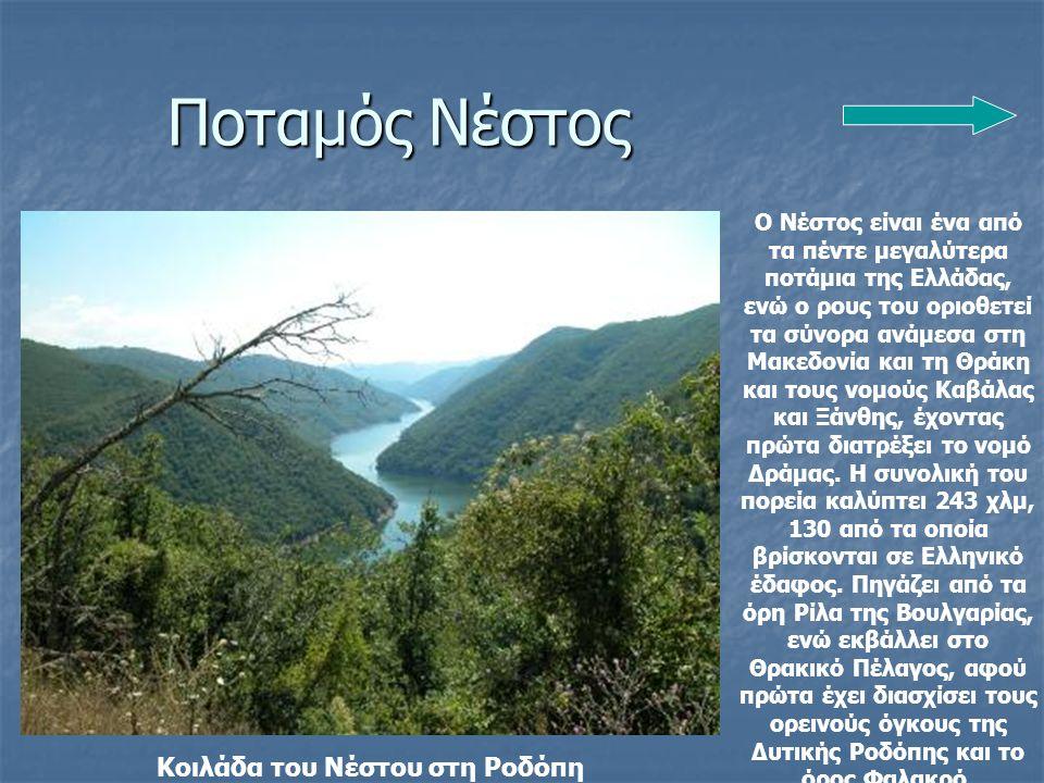 Ποταμός Νέστος Ο Νέστος είναι ένα από τα πέντε μεγαλύτερα ποτάμια της Ελλάδας, ενώ ο ρους του οριοθετεί τα σύνορα ανάμεσα στη Μακεδονία και τη Θράκη και τους νομούς Καβάλας και Ξάνθης, έχοντας πρώτα διατρέξει το νομό Δράμας.