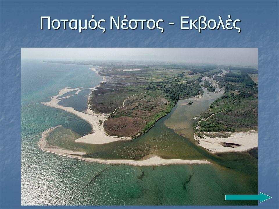 Ποταμός Νέστος - Εκβολές