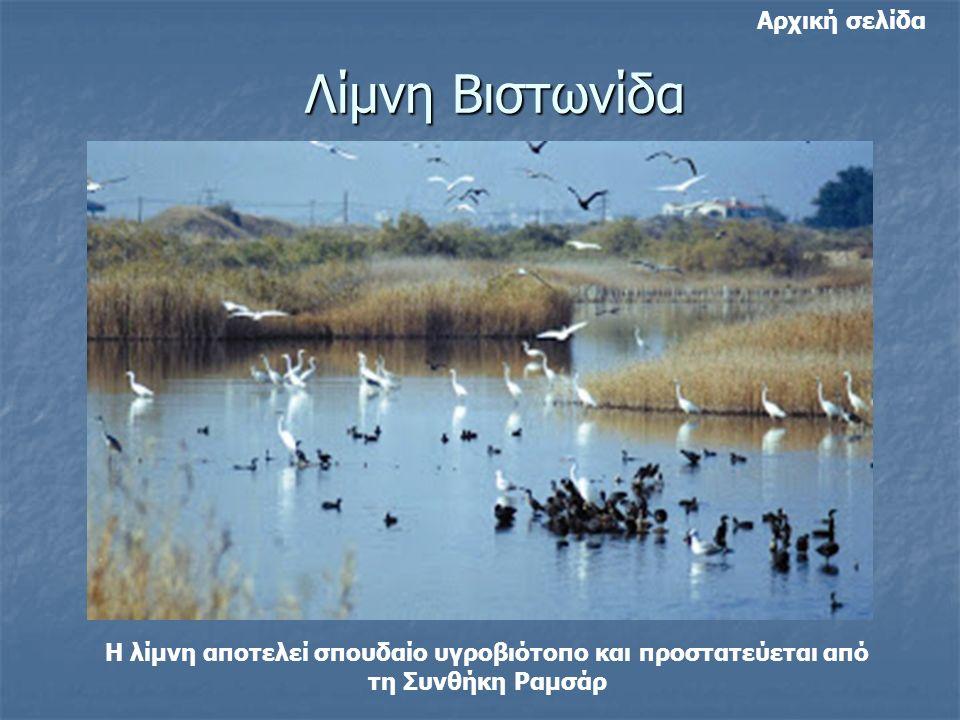 Λίμνη Βιστωνίδα Η λίμνη αποτελεί σπουδαίο υγροβιότοπο και προστατεύεται από τη Συνθήκη Ραμσάρ Αρχική σελίδα