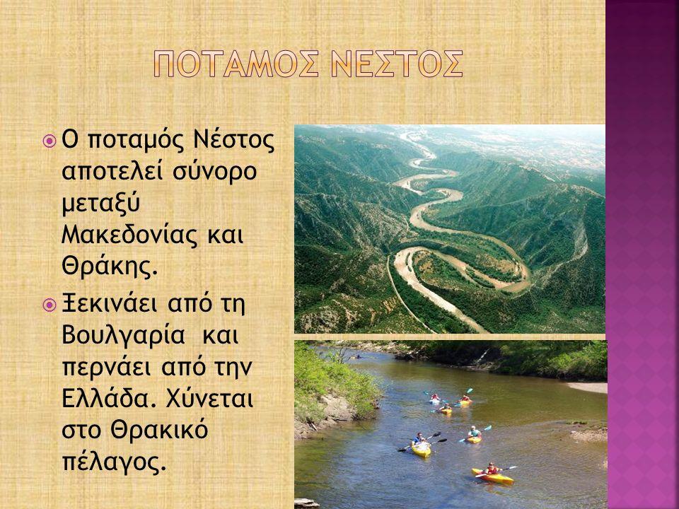 Στο δέλτα του ποταμού σχηματίζεται το παραποτάμιο δάσος του Κοτζά Ορμάν (Μεγάλο Δάσος).