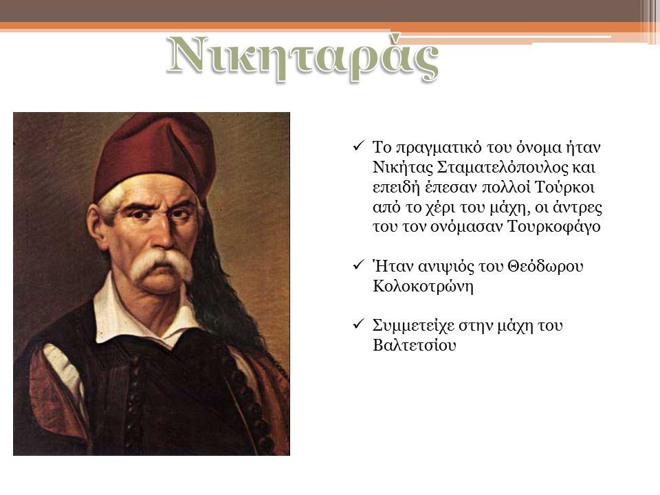 Το πραγματικό του όνομα ήταν Νικήτας Σταματελόπουλος και επειδή έπεσαν πολλοί Τούρκοι από το χέρι του μάχη, οι άντρες του τον ονόμασαν Τουρκοφάγο Ήταν