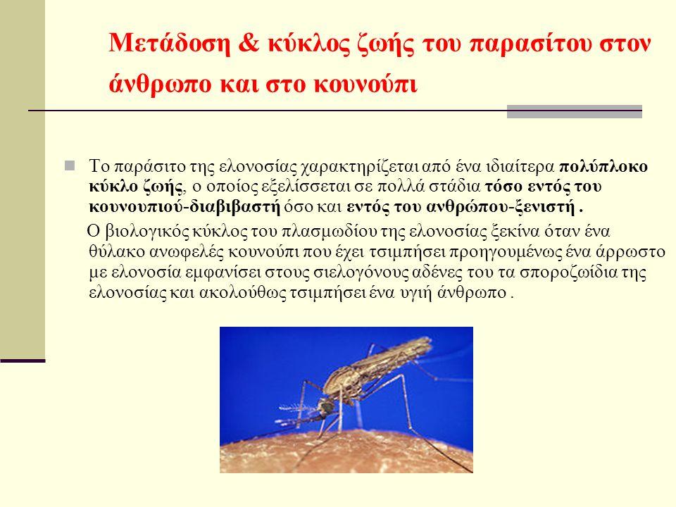 Μετάδοση & κύκλος ζωής του παρασίτου στον άνθρωπο και στο κουνούπι Το παράσιτο της ελονοσίας χαρακτηρίζεται από ένα ιδιαίτερα πολύπλοκο κύκλο ζωής, ο οποίος εξελίσσεται σε πολλά στάδια τόσο εντός του κουνουπιού-διαβιβαστή όσο και εντός του ανθρώπου-ξενιστή.