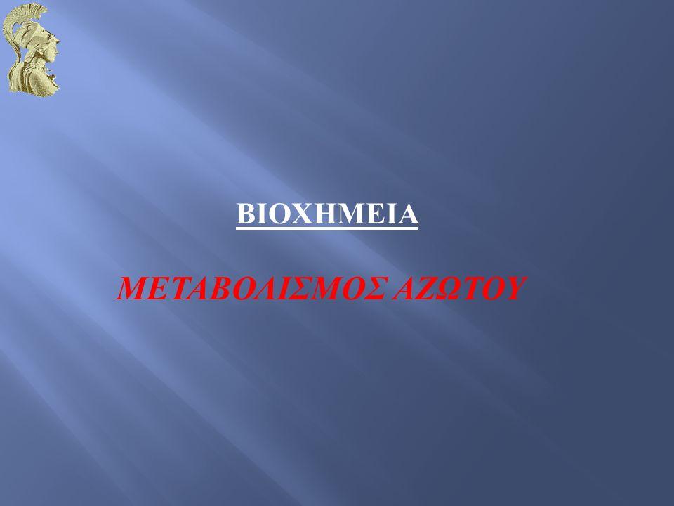  Το άζωτο είναι το τέταρτο συχνότερο στοιχείο στη μάζα των έμβιων όντων, μετά τον άνθρακα, το υδρογόνο και το οξυγόνο  Το μεγαλύτερο μέρος του αζώτου περιέχεται σε αμινοξέα και νουκλεοτίδια  Η πιο σημαντική πηγή αζώτου είναι ο αέρας, ο οποίος κατά 4/5 συνίσταται σε μοριακό άζωτο N2  Λίγα είδη μπορούν να μετατρέψουν το ατμοσφαιρικό άζωτο σε μορφές χρήσιμες για τους ζωντανούς οργανισμούς  Οι μεταβολικές διεργασίες διαφορετικών ειδών λειτουργούν συντονισμένα ώστε να διασώζουν και να ξαναχρησιμοποιούν το βιολογικώς διαθέσιμο άζωτο σε ένα τεράστιο κύκλο αζώτου