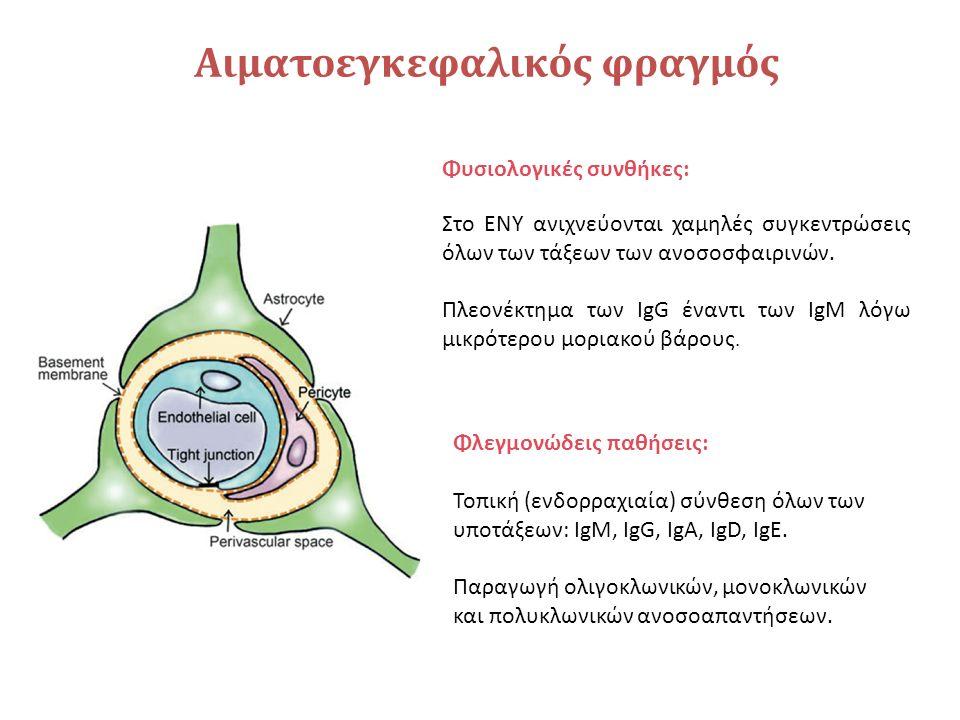ELISA– Ενδοκυτταρικά αντιγόνα Αντιγόνο 1 st Ab– Αντισώματα ασθενούς 2 nd Ab Ενζυμο Υπόστρωμα Προιόν ενζυμικής αντίδρασης