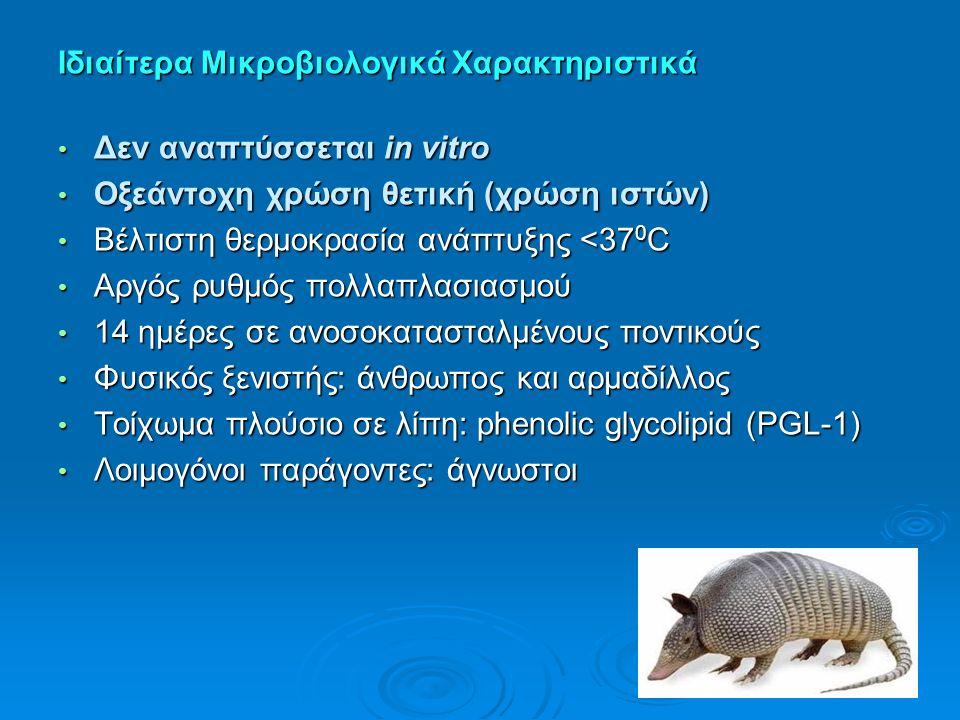 Ιδιαίτερα Μικροβιολογικά Χαρακτηριστικά Δεν αναπτύσσεται in vitro Δεν αναπτύσσεται in vitro Οξεάντοχη χρώση θετική (χρώση ιστών) Οξεάντοχη χρώση θετικ