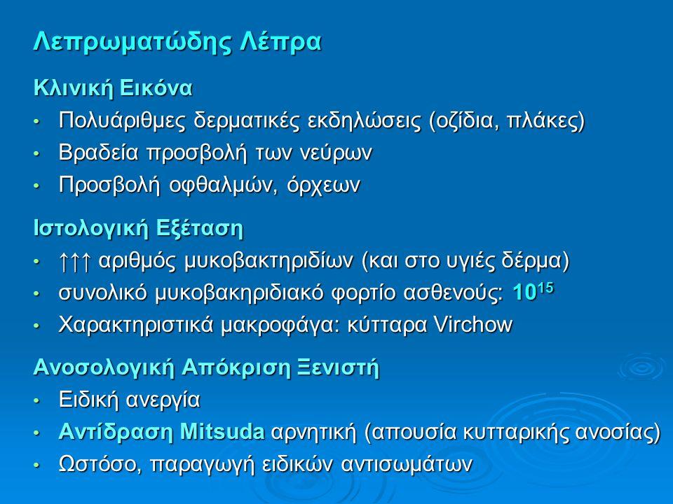 Λεπρωματώδης Λέπρα Κλινική Εικόνα Πολυάριθμες δερματικές εκδηλώσεις (οζίδια, πλάκες) Πολυάριθμες δερματικές εκδηλώσεις (οζίδια, πλάκες) Βραδεία προσβο