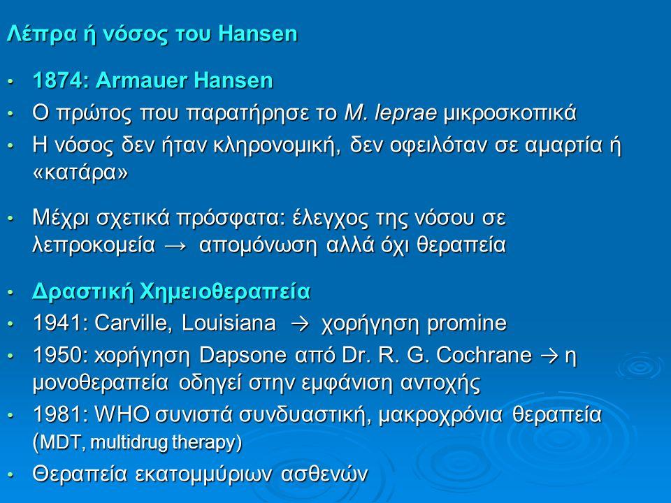 Λέπρα ή νόσος του Hansen 1874: Armauer Hansen 1874: Armauer Hansen Ο πρώτος που παρατήρησε το Μ. leprae μικροσκοπικά Ο πρώτος που παρατήρησε το Μ. lep