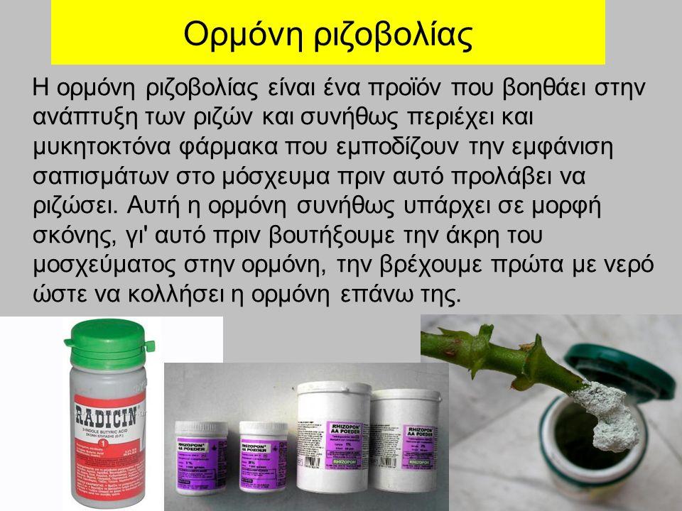 Ορμόνη ριζοβολίας Η ορμόνη ριζοβολίας είναι ένα προϊόν που βοηθάει στην ανάπτυξη των ριζών και συνήθως περιέχει και μυκητοκτόνα φάρμακα που εμποδίζουν