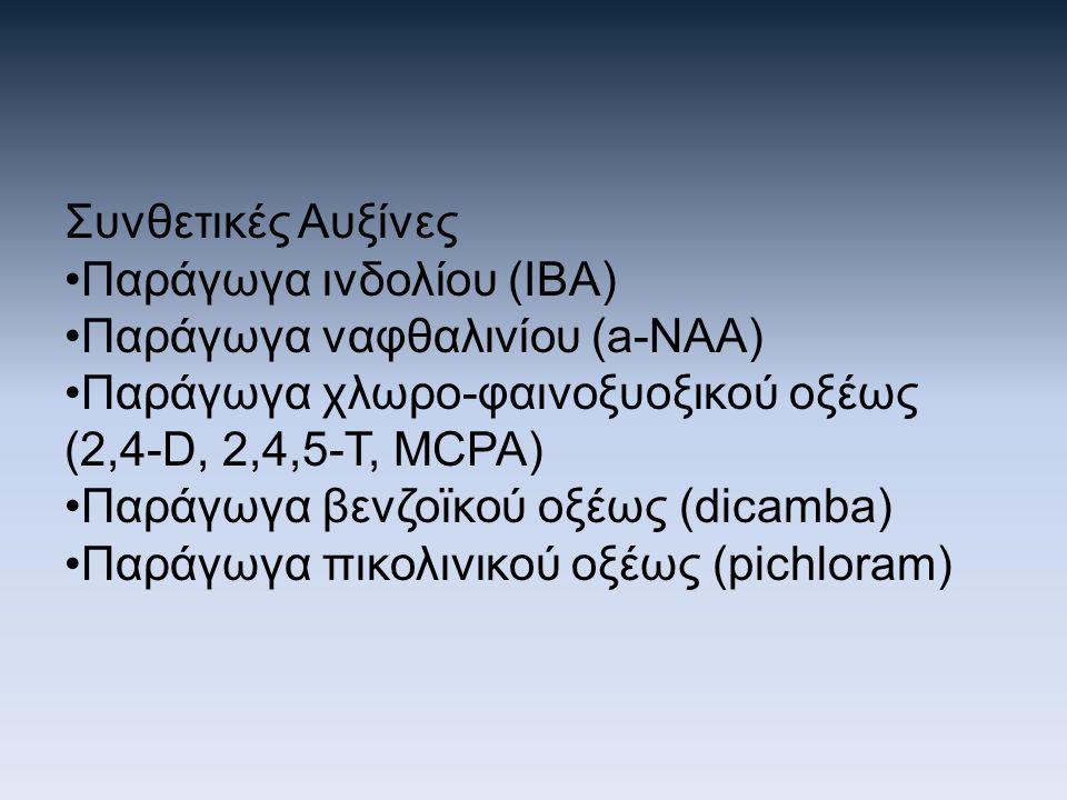 Συνθετικές Αυξίνες Παράγωγα ινδολίου (ΙΒΑ) Παράγωγα ναφθαλινίου (a-NAA) Παράγωγα χλωρο-φαινοξυοξικού οξέως (2,4-D, 2,4,5-T, MCPA) Παράγωγα βενζοϊκού ο
