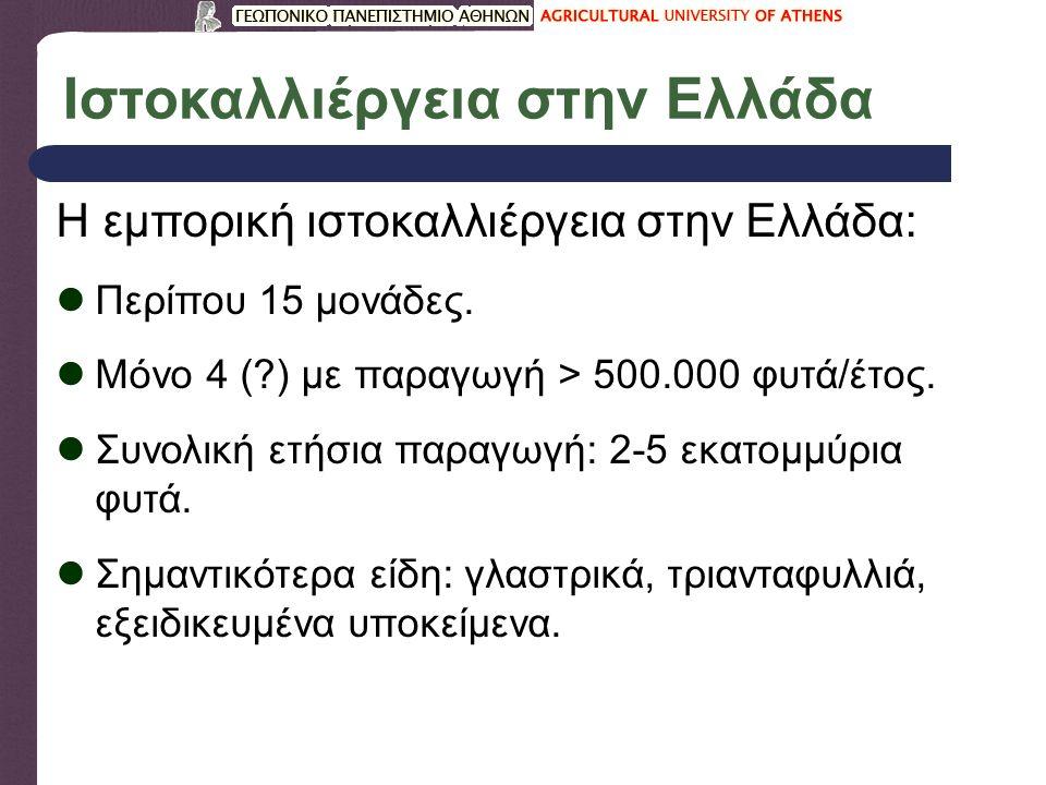 Ιστοκαλλιέργεια στην Ελλάδα Η εμπορική ιστοκαλλιέργεια στην Ελλάδα: Περίπου 15 μονάδες. Μόνο 4 (?) με παραγωγή > 500.000 φυτά/έτος. Συνολική ετήσια πα
