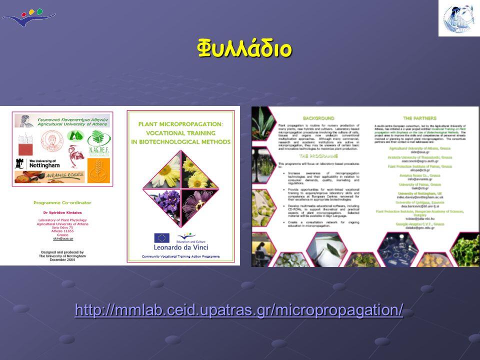 Φυλλάδιο http://mmlab.ceid.upatras.gr/micropropagation/