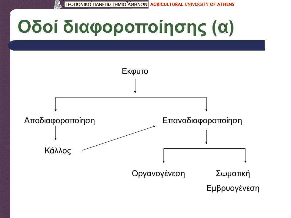 Οδοί διαφοροποίησης (α)