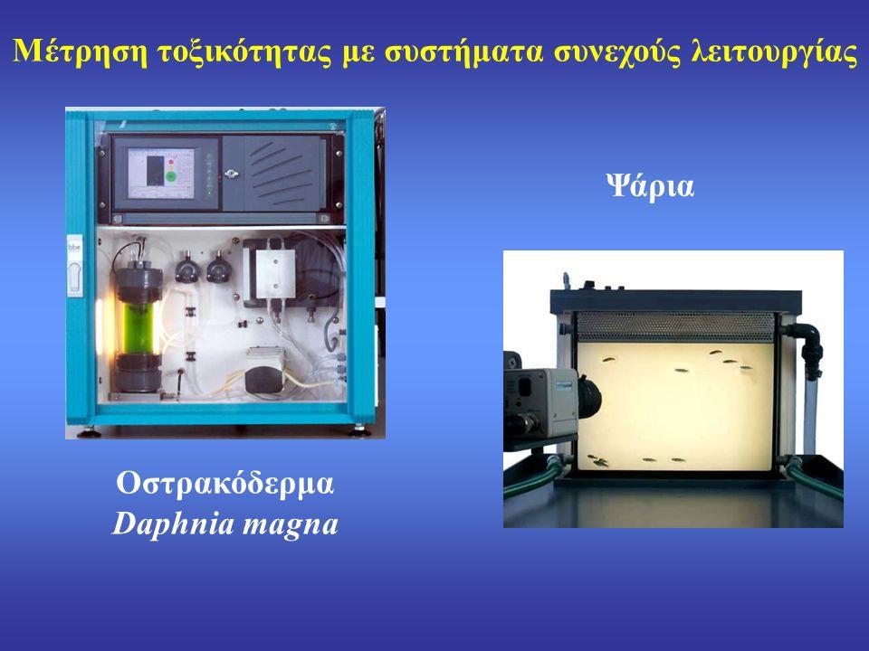 Οστρακόδερμα Daphnia magna Ψάρια Μέτρηση τοξικότητας με συστήματα συνεχούς λειτουργίας
