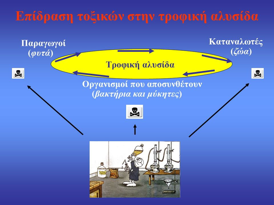 Οικοτοξικολογικές αναλύσεις  Οξεία τοξικότητα  Τοξικότητα μακράς περιόδου  Πειράματα αναπαραγωγικής ικανότητας  Πειράματα βιοσυσσώρευσης  Πειράματα μεταλλαξιγένεσης