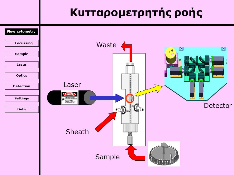 Laser Sample Sheath Waste Detector Κυτταρομετρητής ροής Flow cytometry Focussing Sample Laser Optics Detection Settings Data