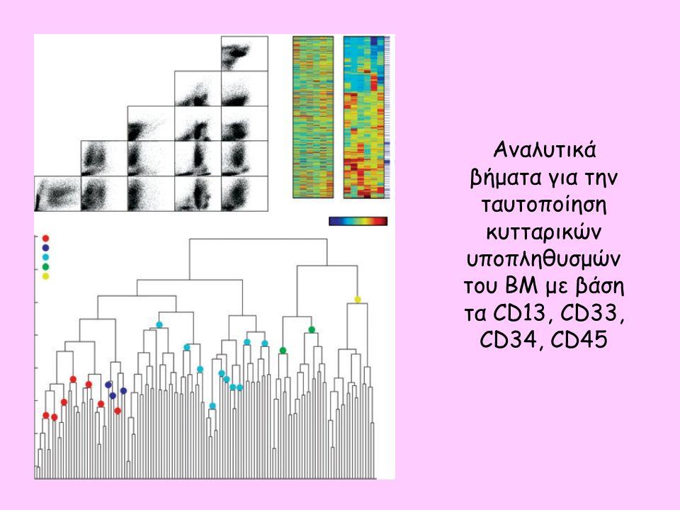 Αναλυτικά βήματα για την ταυτοποίηση κυτταρικών υποπληθυσμών του BM με βάση τα CD13, CD33, CD34, CD45