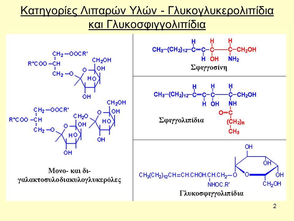 3 Κατηγορίες Λιπαρών Υλών – Χοληστερόλη και παράγωγά της Cholesterol (a sterol) Testosterone (a steroid hormone) Vitamin D3 (cholecalciferol) Stigmasterol (a phytosterol)