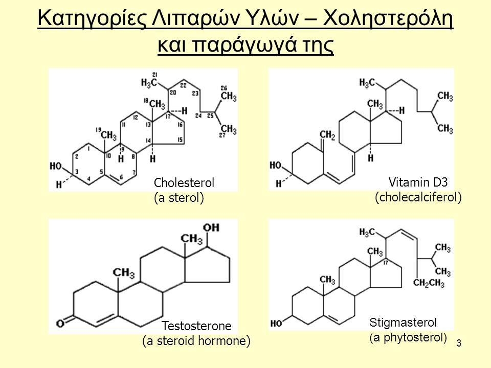 4 Χοληστερόλη Οι στερόλες είναι πολυδακτυλιακές δομές, σημαντικές στην σύνθεση ορμονών και χολής.