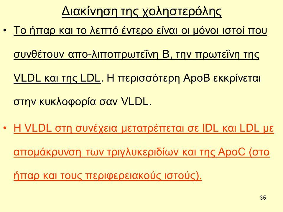 35 Διακίνηση της χοληστερόλης Το ήπαρ και το λεπτό έντερο είναι οι μόνοι ιστοί που συνθέτουν απο-λιποπρωτεΐνη Β, την πρωτεΐνη της VLDL και της LDL.