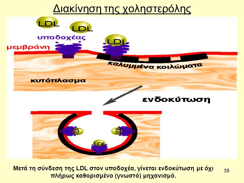 39 Διακίνηση της χοληστερόλης Μετά τη σύνδεση της LDL στον υποδοχέα, γίνεται ενδοκύτωση με όχι πλήρως καθορισμένο (γνωστό) μηχανισμό.