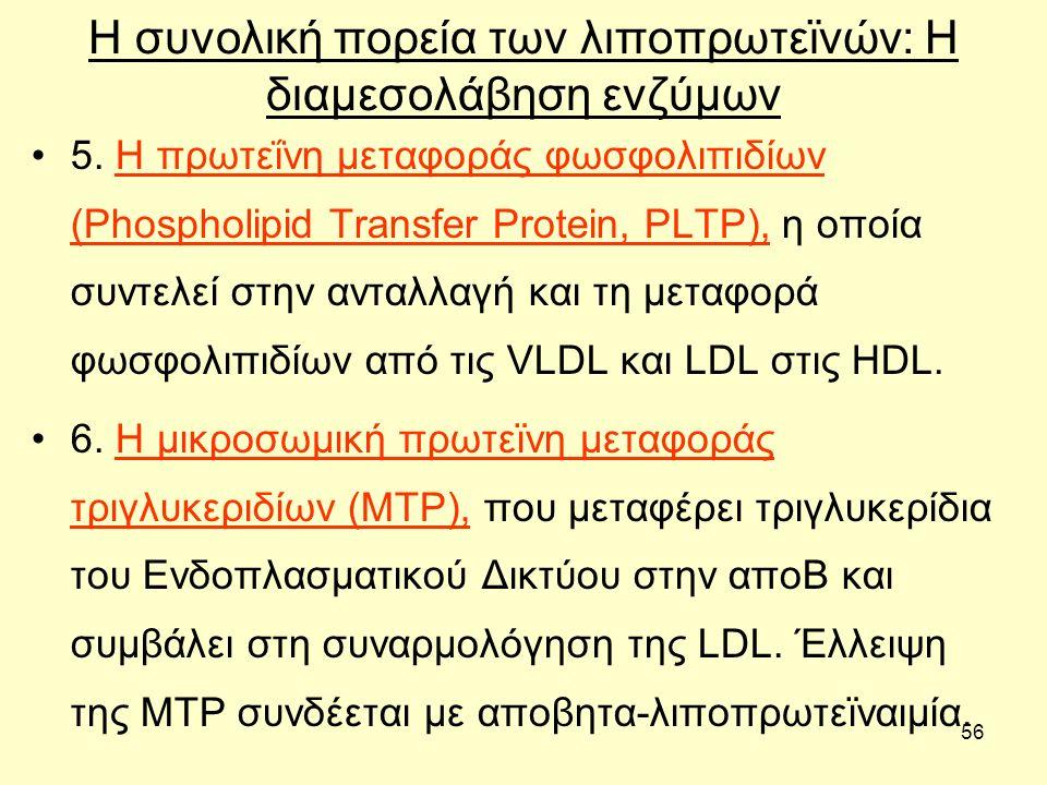 56 Η συνολική πορεία των λιποπρωτεϊνών: H διαμεσολάβηση ενζύμων 5.