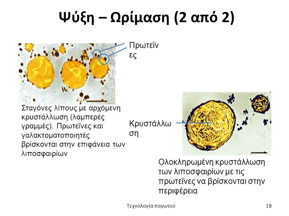Ψύξη – Ωρίμαση (2 από 2) Σταγόνες λίπους με αρχόμενη κρυστάλλωση (λαμπερές γραμμές). Πρωτεΐνες και γαλακτοματοποιητές βρίσκονται στην επιφάνεια των λι