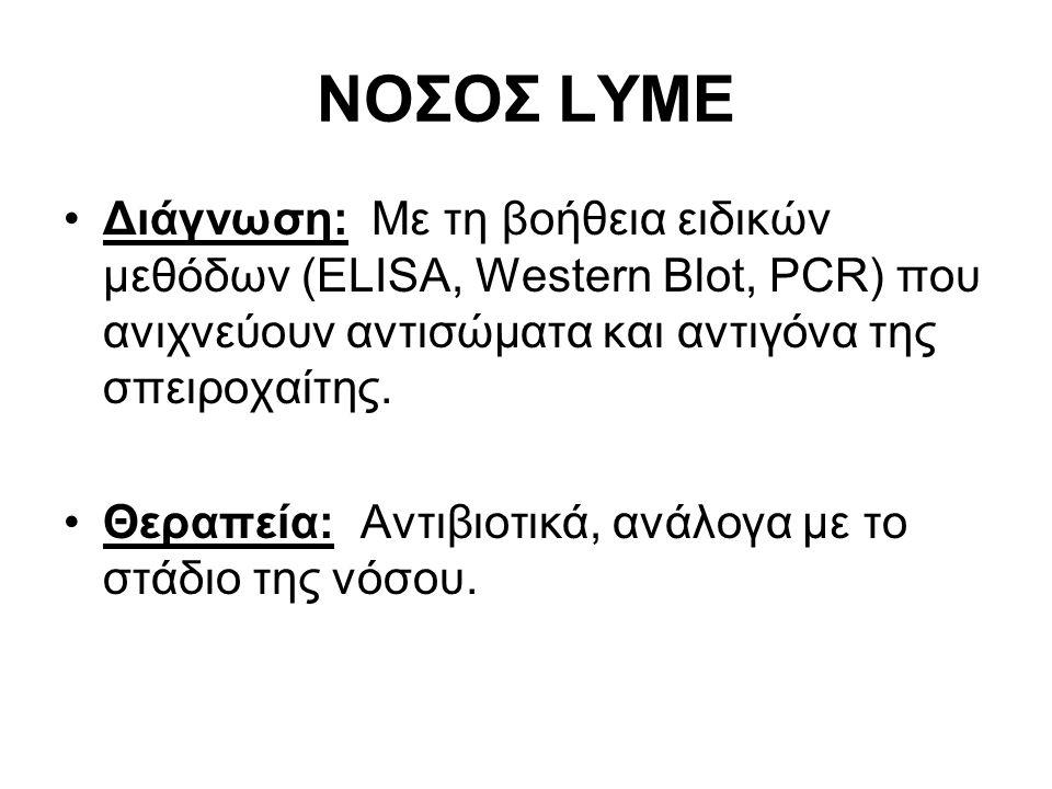 Διάγνωση: Με τη βοήθεια ειδικών μεθόδων (ELISA, Western Blot, PCR) που ανιχνεύουν αντισώματα και αντιγόνα της σπειροχαίτης.