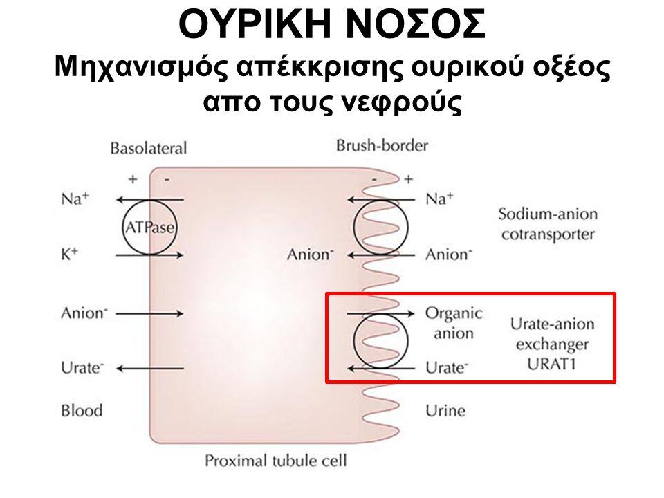 ΟΥΡΙΚΗ ΝΟΣΟΣ Μηχανισμός απέκκρισης ουρικού οξέος απο τους νεφρούς